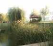 pescuit-balta-foisor-16