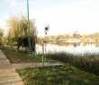 pescuit-balta-foisor-5